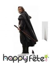 Silhouette de Luke Skywalker taille réelle
