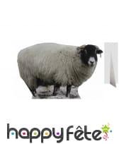Silhouette de mouton en carton, taille réelle