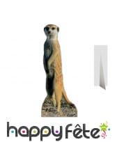 Silhouette de suricate en carton plat