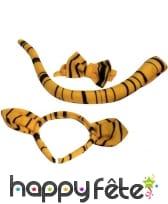 Set de tigre. Noeud, queue et serre tète