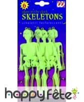Squelettes en plastique phosphorescent
