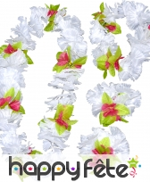 Set hawaïen fleuri luxe