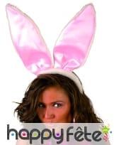 Serre tète grandes oreilles de lapin