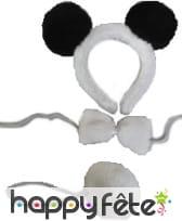 Serre tête noeud papillon et queue de panda