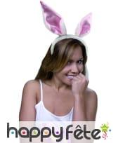 Serre tète oreilles de lapin