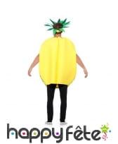Tabard ananas, image 2