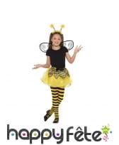 Tutu, ailes et antennes de petite abeille