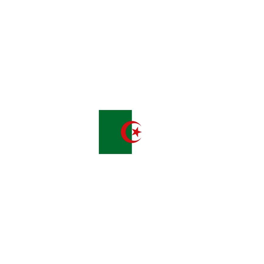 Drapeau alg rien - Service a the algerien ...