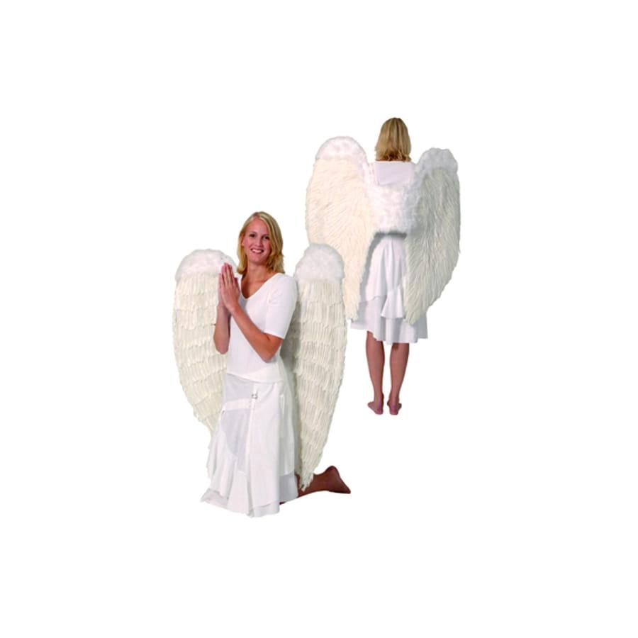 Grandes ailes d 39 ange en plumes for Tableau aile d ange