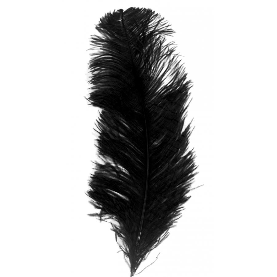 Grande plume noire d'autruche de 25/32cm