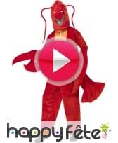 vidéo Déguisement de homard